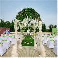 成都适合办婚宴的酒店推荐-草坪婚礼
