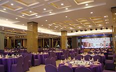 紫金1号厅