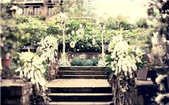 Rose花园