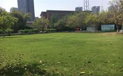 户外大草坪