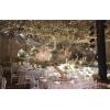 合信石大酒店婚宴图片