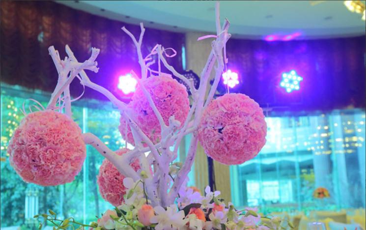 桂品轩酒店婚宴图片